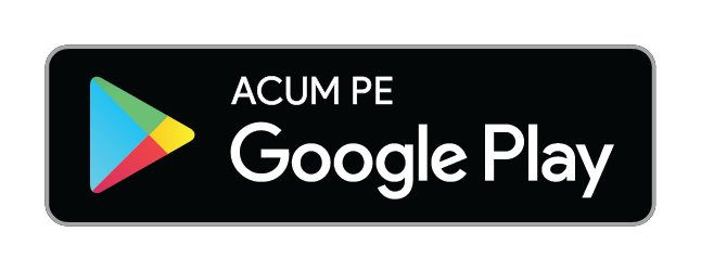 https://play.google.com/intl/en_us/badges/images/generic/ro_badge_print_generic.png